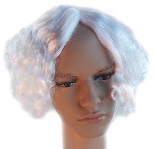 Mad Scientist Einstein Mark Twain Curly White Wig for Men and Women (Einstein Costume Wig)
