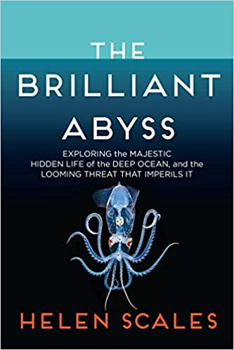 The-Brilliant-Abyss