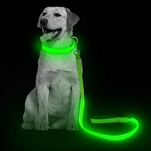 VIZPET LED Dog Leash - USB Light UP Rechargeable Nylon Dog Leash - 47.2 Inch with 3 Flash Modes and Metal Buckle - Keeps Your Dog Safe All The Time (Green)