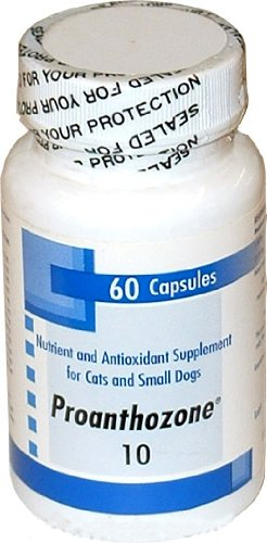 Proanthozone 10mg for Cats and Small Dogs 60 Caps, My Pet Supplies