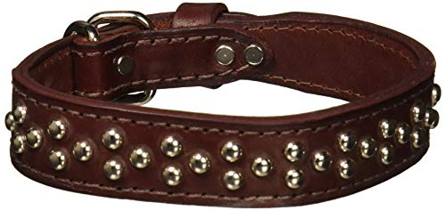 - OmniPet Leather Brothers 6013-BU21 1.25 x 21-Inch Tapered Dome Full-Studded Latigo Leather Dog Collar, Large, Burgundy