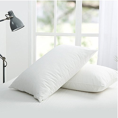 2 Packs Standard Pillow Protector - Waterproof Zippered Encasement Bed Bug Proof Pillow Cover Protects Against Dust Mite, Bacteria, Allergens, 20X26 Inch by Hippih