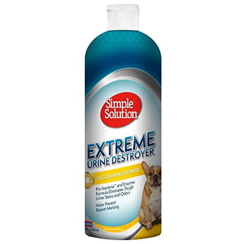 Simple Solution Urine Destroyer Enzymatic Cleaner   Pet Stain and Odor Remover with 2X Pro-Bacteria Cleaning Power