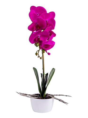 Phaleanopsis Arrangement with Vase Decorative Artificial Orchid Flower Bonsai (Pink)