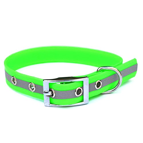 Bright Reflective collar
