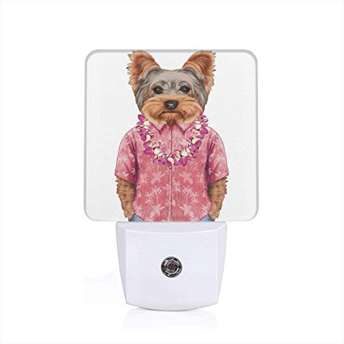 Colorful Plug in Night,Portrait of A Dog in Humanoid Form with A Pink Shirt with Hawaian Lei Fun Image,Auto Sensor LED Dusk to Dawn Night Light Plug in Indoor for Childs Adults