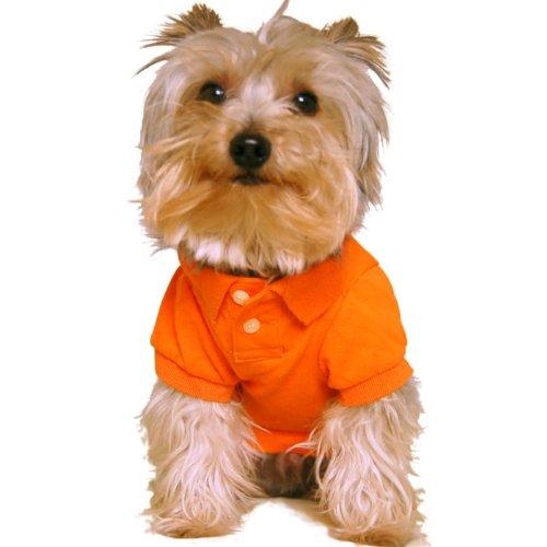 Size S/M, Designer Dog Clothes, Preppy Pet Polo Shirt, Sun-kissed Orange, 100% Cotton, My Pet Supplies