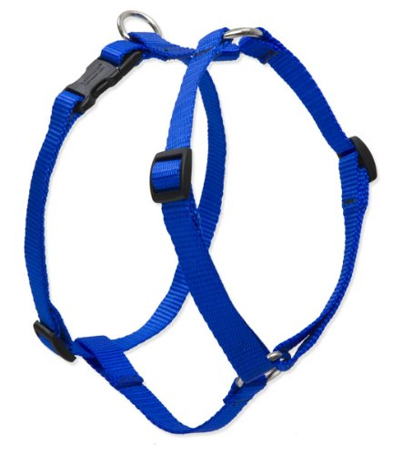 """LupinePet Basics 1"""" Blue 24-38"""" Adjustable Roman Dog Harness for Large Dogs"""