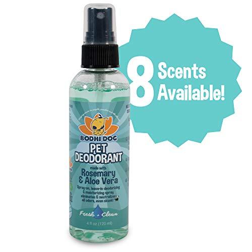 Natural Pet Cologne | Cat & Dog Deodorant and Scented Perfume Body Spray | Clean and Fresh Scent | Natural Deodorizing & Conditioning Qualities | Made in USA - 1 Bottle 4oz (120ml) (Fresh & Clean) from Bodhi Dog