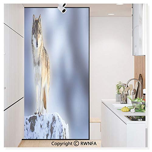 Window Door Sticker Glass Film,Carnivore Animal in Snow Mountains Blurred Background Alpine Canine Nature Photograph Anti UV Heat Control Privacy Kitchen Curtains for Glass,30 x 59.8 inch,Multicolor