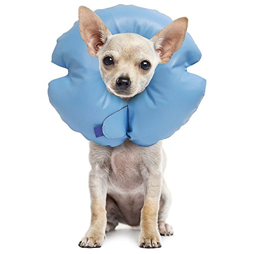 Remedy + Recovery Stay Rite Xtra Strong Inflatable Recovery Dog Collar, Small, Blue