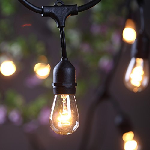 [Outdoor Commercial String Lights- AMLIGHT 24 Ft Heavy Duty Weatherproof Lighting Strands- 14 Gauge Black Cable with 12 Hanging Sockets- 18 Bulbs- Perfect Patio Garden or Party] (Strand Lighting Light)