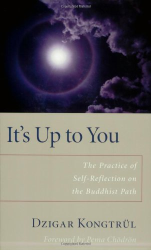 its-up-to-you-the-practice-of-self-reflection-on-the-buddhist-path