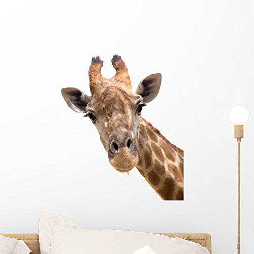 Giraffe Peel (Giraffe Closeup Wall Decal by Wallmonkeys Peel and Stick Graphic (18 in H x 15 in W) WM10555)