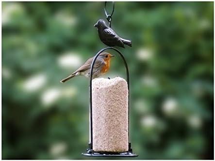 Cylindre aux vers de terre 850/gr Nourriture oiseaux sauvages