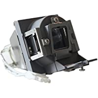 Litance Projector Lamp Replacement 5J.J9R05.001 for BenQ MS524A, MS504, MS521P, MX522P, MX505, MX525A, MS504A and More