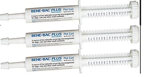 Bac Bene Gel - (3 Pack) Bene-Bac Plus Probiotic Pet Gel 15g Each X 3 Syringes