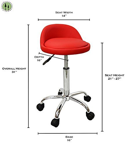 Devlon Northwest Salon Stool With Back Rest Saddle