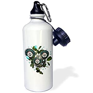 "3dRose ""Cool Steampunk Barometer and Aqua Roses"" Sports Water Bottle, 21 oz, White"