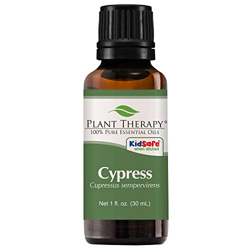 Plant Therapy Cypress Essential Oil | 100% Pure, Undiluted,