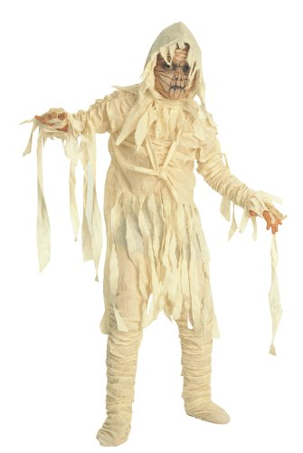 Universal Studios Deluxe Child's Mummy Costume, Medium (Kids Mummy Costumes)
