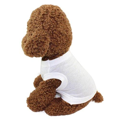 fbR8wawOKPHoYL9 Fashion Pet Puppy Summer Shirt Small Dog Cat Pet Clothes Stripe Vest T Shirt (White, XS)