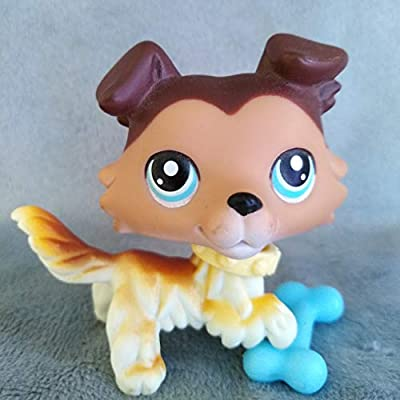 Amazoncom Lps Cats And Dogs Rare Figures Collection With Lps