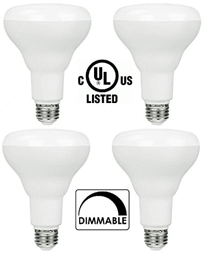 Indoor Flood Light Bulb Sizes in US - 6