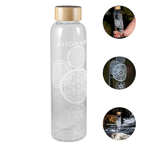 Vibe Bottle Glass Water Bottle 20 Ounce - Drink Clean Fresh Water, BPA-Free Reusable Glass for Beverages Smoothies - Scratch Proof Liquid Container with Nylon Sleeve Bamboo Lid - Durable Recyclable
