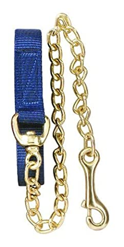 Perri's Flat Nylon Lead with Chain, Royal Blue, 8-Feet - Nylon Chain
