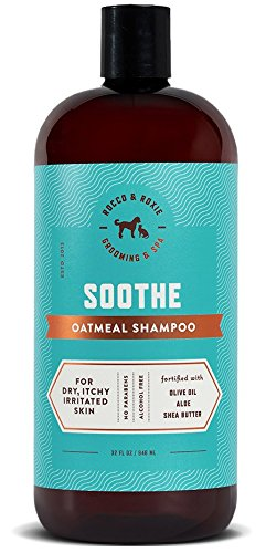 Rocco & Roxie Oatmeal Dog Shampoo for Itchy Skin - Soothing Relief Anti Itch Aloe Vera and Moisturizing Shea Butter - Natural Wash for Dirty Pets (32 oz) Ear Wash Anti Itch