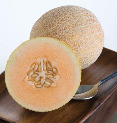 David's Garden Seeds Fruit Cantaloupe Tasty Bites (Orange) 25 Hybrid Seeds