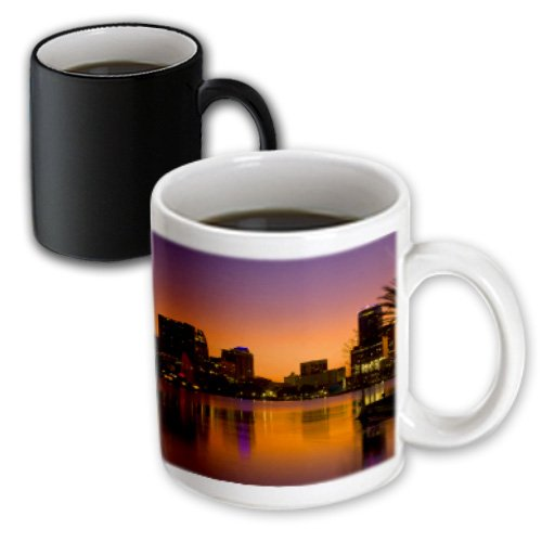 3dRose Orlando, Florida Skyline at Night - Bill Bachmann, Magic Transforming Mug, 11-Oz