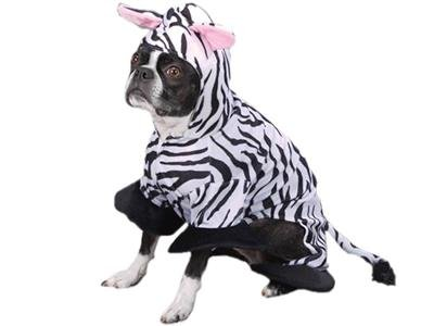 Zack & Zoey Wild Safari Animal Zebra Halloween Dog Costume Medium