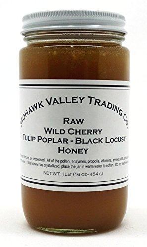Black Cherry 16 Oz Jar (Raw Honey - Wild Cherry Blossom-Tulip Poplar-Black Locust, Product of USA - Unfiltered - Unpasteurized - Unprocessed - 1 LB (16 oz - 454 G))
