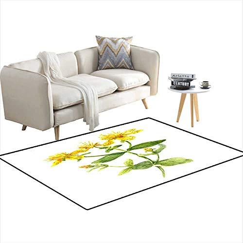 Area Rugs for Bedroom Hypericum Flower John s Wort Plant Watercolour 4'x8'