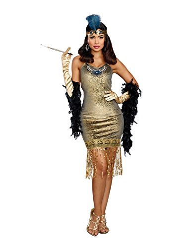 Dream Girl Couples Costumes (Dreamgirl Women's Golden Girl, Gold, S)