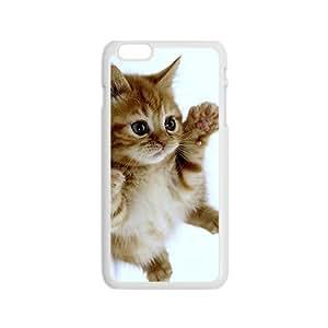Adorable Little Kitten Kitty White Phone Case for Iphone6