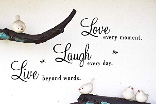 Live Laugh Love Vinyl Decal Wall sticker – Love Every Moment,Laugh Every Day, Live Beyond Words – Wall Decal Words – Removable Wall Decals (Live Laugh Love Learn)