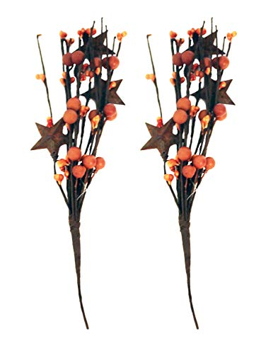Pip Berry Metal Star Picks 2piece - 9inch Twigs Orange Color Faux Berries - Mini Artificial Plant Stem for Vases or Crafts - Country Primitive Floral Home Wedding Decor -