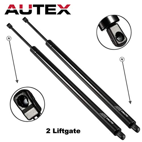Autex Qty 2 Rear Tailgate Liftgate Lift Supports Struts Compatible With Honda Odyssey 2005 06 07 08 09 2010 SG126007 ()