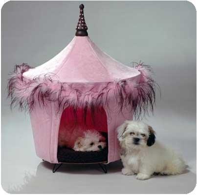 Pet Tents Posh u0026 Pink Pet Tent Bed & Amazon.com : Pet Tents Posh u0026 Pink Pet Tent Bed : Pet Supplies