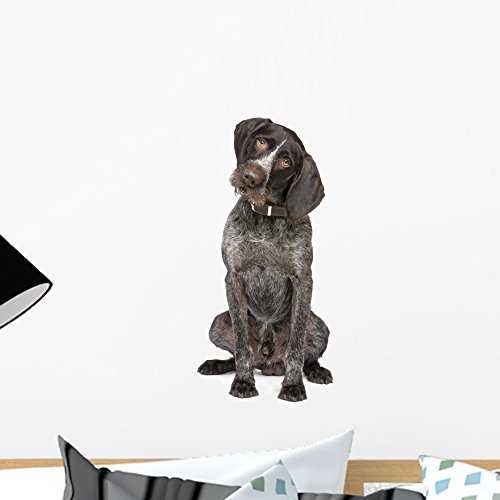 Wallmonkeys German Short-haired Pointer Dog Wall Decal Peel and Stick Graphic (18 in H x 15 in W) WM71217