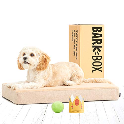 BarkBox Memory Foam Dog Bed | Plush Orthopedic Joint Relief Mattress Machine Washable + Removable Cover; Water Resistant Lining, Includes Squeaker Toy | Small | Sand