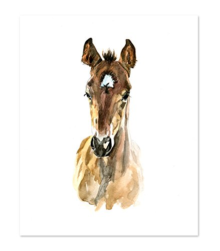 (AtoZStudio A36 Horse Poster Print - Cute Baby Animal Watercolor Painting Portrait Face - Wall Art Decor Picture Artwork - Farm)