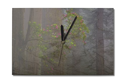 Lantern Press Redwood Forest (10x15 Wood Wall Clock, Decor Ready to Hang)