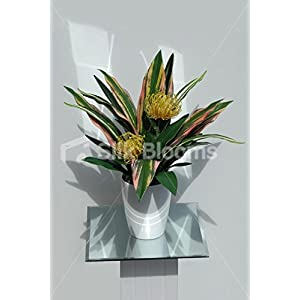 Artificial Protea Pin Cushion & Cordyline Leaves Vase Display 33