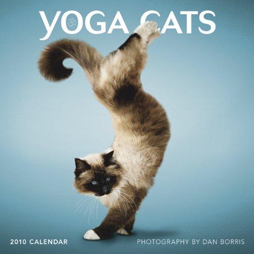 Yoga Cats 2010 Square Wall (Multilingual Edition ...