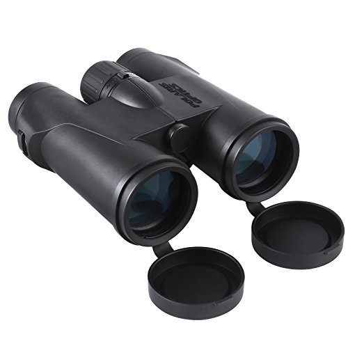 how to buy binoculars for bird watching