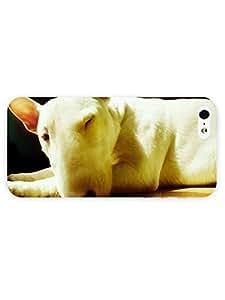 3d Full Wrap Case for iPhone 5/5s Animal Bull Terrier43